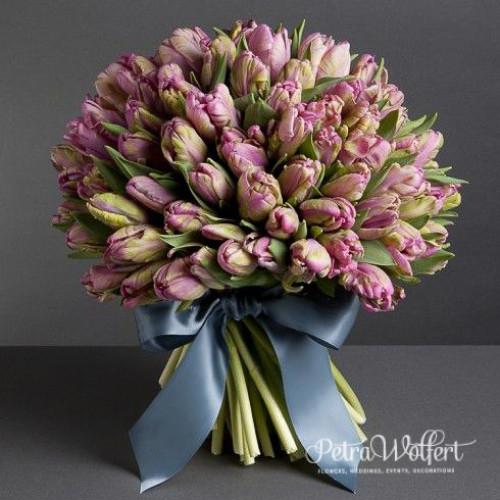 Tulip Simple, kytica tulipánov